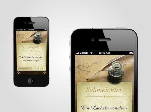 mcs_solutions_destail_der_schmeichler_02